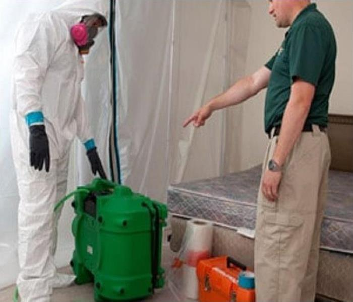 Mold Remediation How Does Blasting Remove Mold?