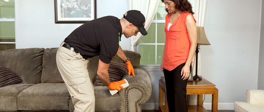 Kennesaw, GA carpet upholstery cleaning
