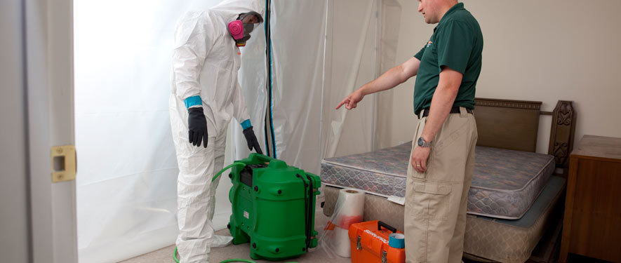 Kennesaw, GA mold removal process